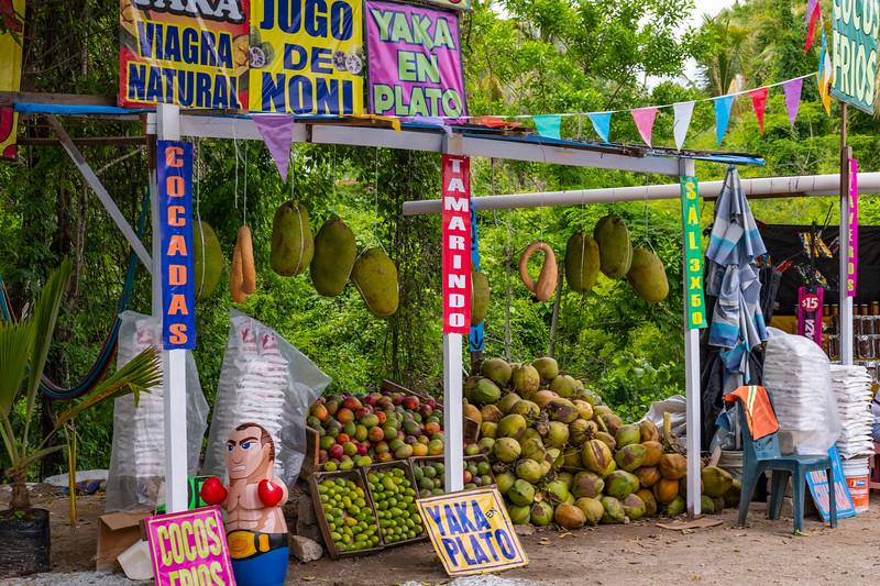Sayulita_Mexico_004