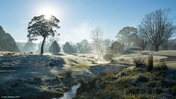 "Images capured in the early morning fog on a frosty mornng at Royal Wellington Golf Club, Heretaunga, Wellington, New Zealand on Sunday, 16 July 2017. Copyright: John Mathews 2017.   <a href=""http://www.megasportmedia.co.nz"">http://www.megasportmedia.co.nz</a>"