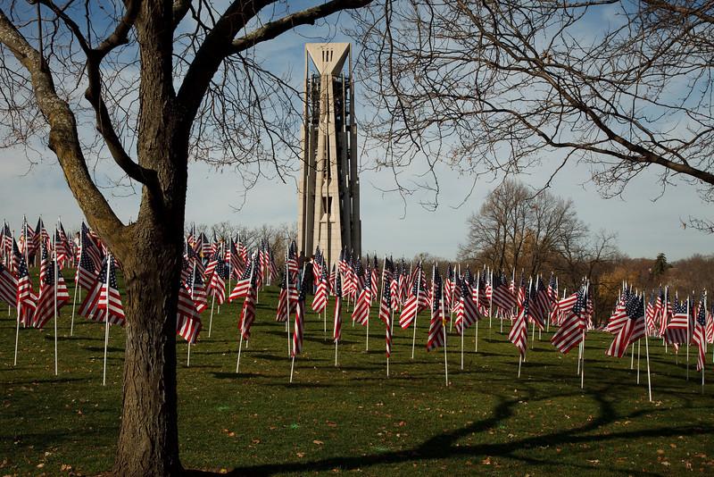 Veteran's Day 2009<br /> Rotary Hill, Naperville, IL