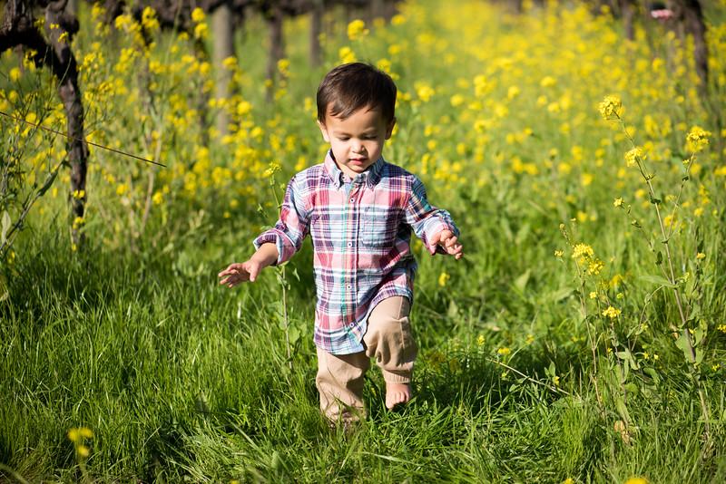 Elaine-Lee-Photography-Peek-Kids-Spring-2015-Babies-_EKL6828