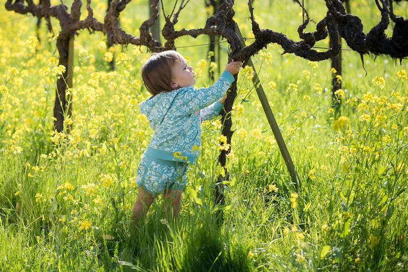 Elaine-Lee-Photography-Peek-Kids-Spring-2015-Babies-_EKL6650