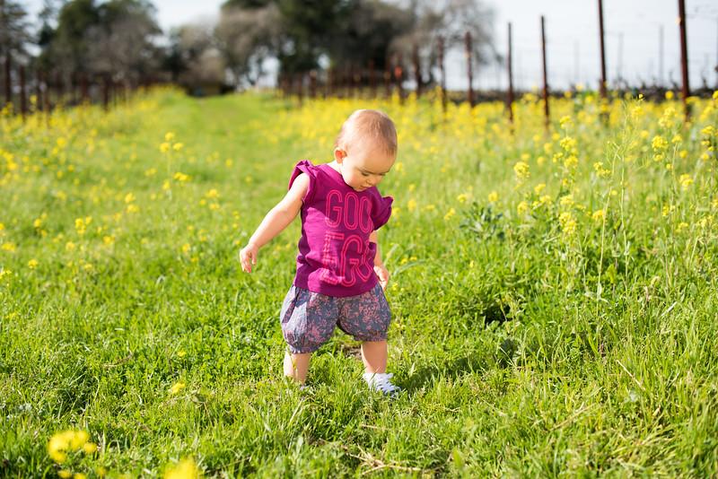 Elaine-Lee-Photography-Peek-Kids-Spring-2015-Babies-_EKL5286