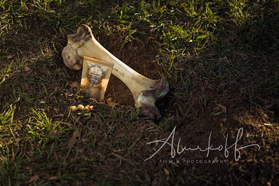 TGBB_Dog_Photography_Alurkoff-0022