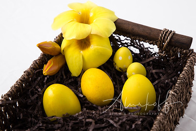 Easter-eggs-0129-Edit