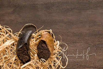 TGBB_Product_Photography_Alurkoff-0015