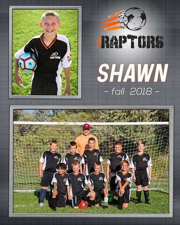 2-Shawn_Team