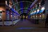 Naper Lights_0021