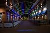 Naper Lights_0022