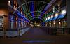 Naper Lights_0023