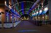 Naper Lights_0019