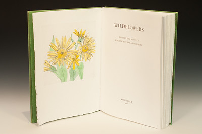 Sarha Horowitz_Wildflowers-9025