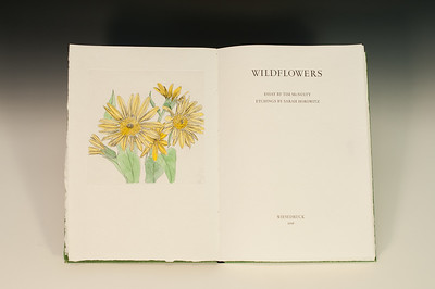 Sarha Horowitz_Wildflowers-9093