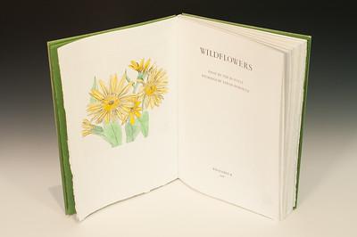 Sarha Horowitz_Wildflowers-9031