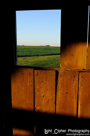 Field View (Portrait)