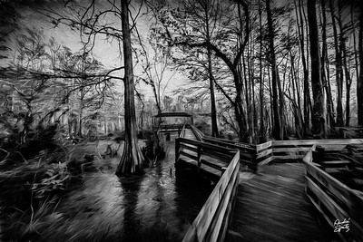 The Duck Pond in the swamp (Six Cypress Slough Preserve)