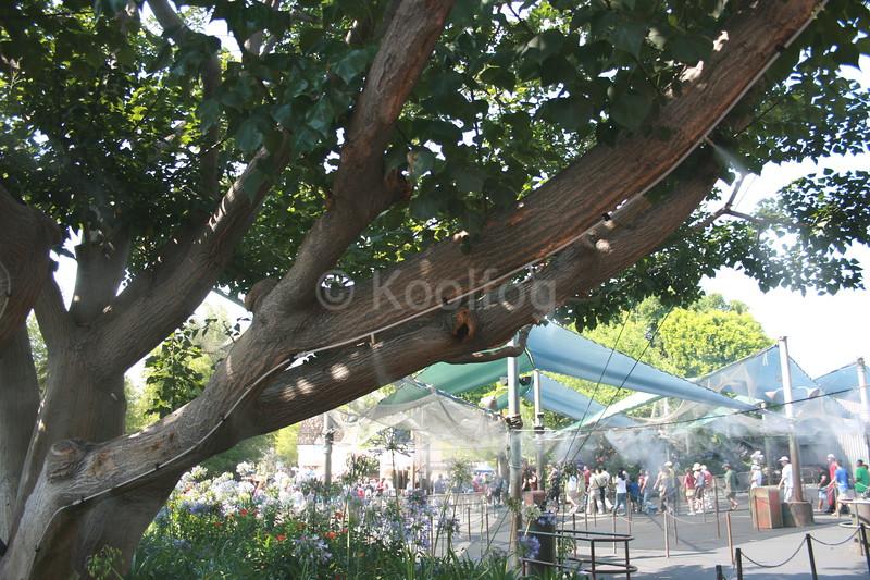 Misting Line Retrofitted to Tree