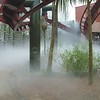 Fog Under Coaster Low Res