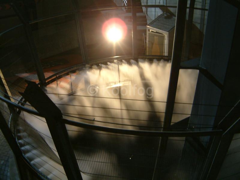 Oblivion Fog Ring