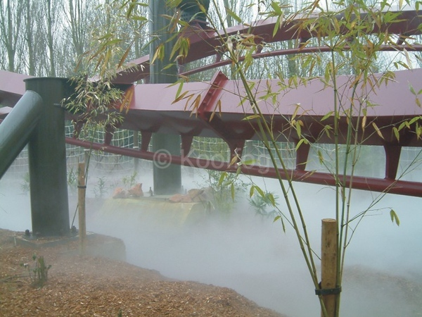 Coaster Fog Low Res