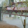 Coaster Fog Low Res