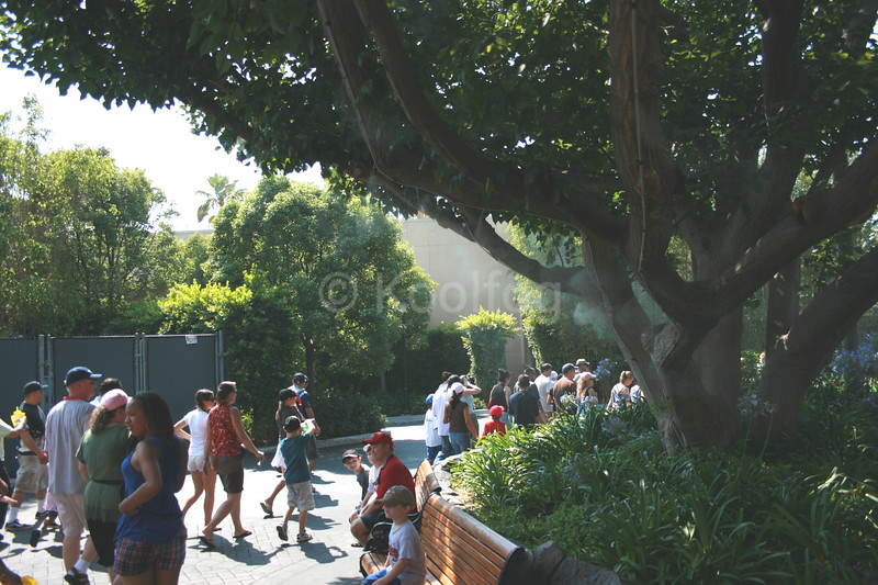 Priority Queue Waiting Area with Misting Tree