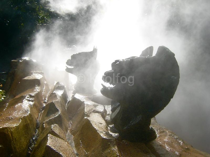 Dinosaurs in Fog