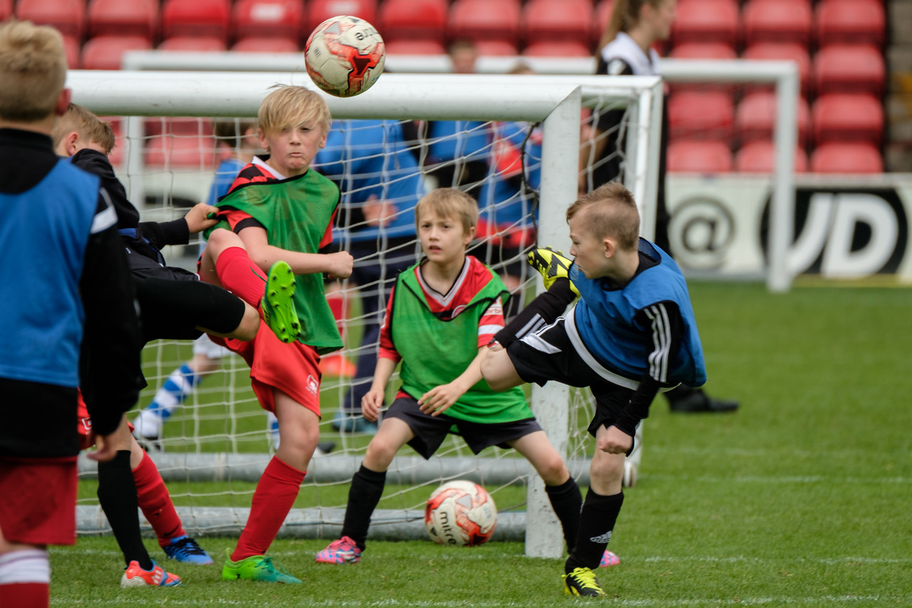Saddlers Experience Day to raise funds for Alzheimer's Society