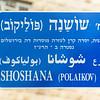 Shoshana