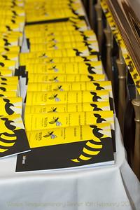 Wasps1_002