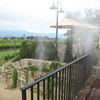 Misting on Rail at Mumm