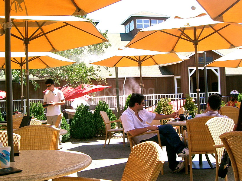 Mumm Courtyard Under Umbrellas