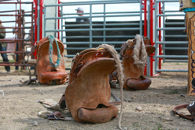 MIles City Bucking Horse Sale