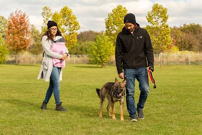 Elmira Dog Park