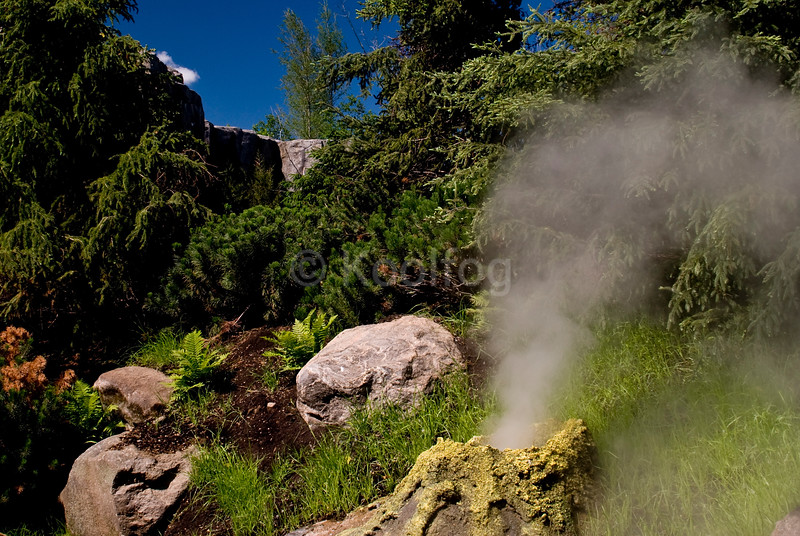 Steam vent in natural setting