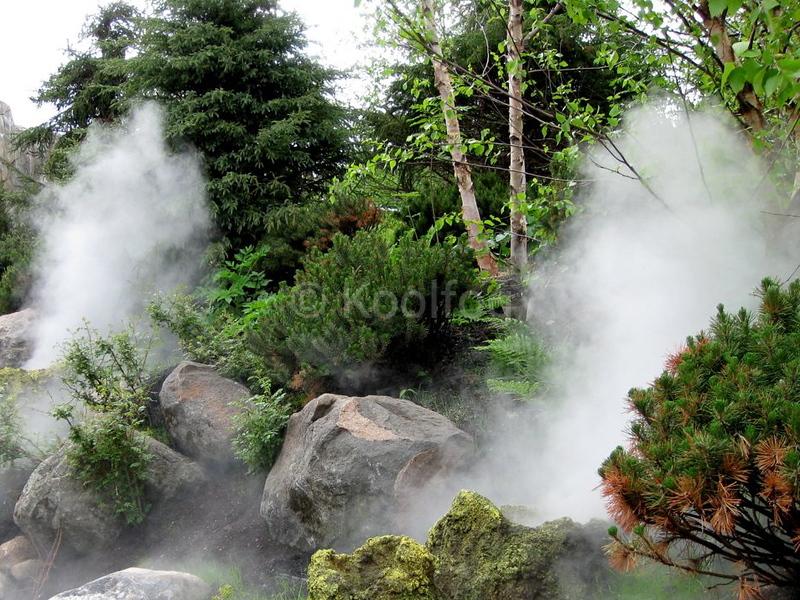 Minnesota Zoo Steam Vents