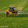 Soy Bean Field and Crop Sprayer, Thornton, Ontario, Canada