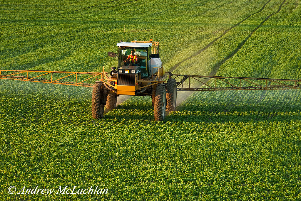 Soy Bean Field and Crop Sprayer, Thornton, Ontario, Canada