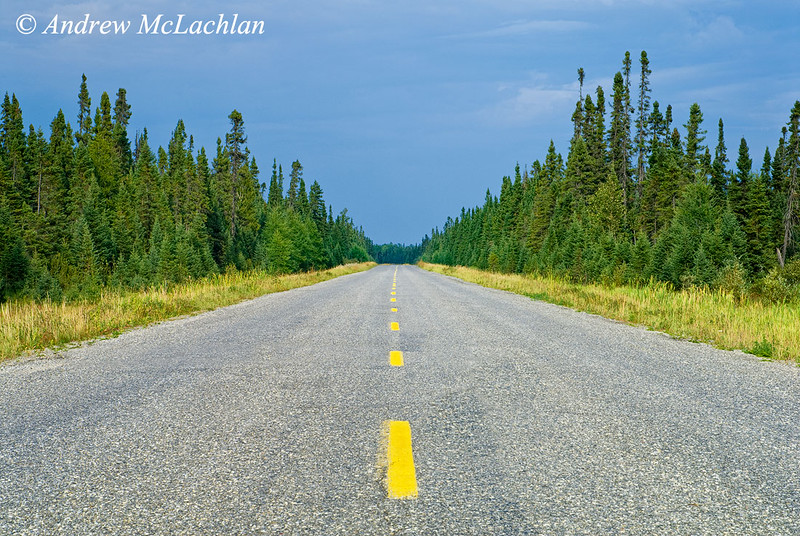 Highway 634 in the boreal forest near Fraserdale, Ontario, Canada
