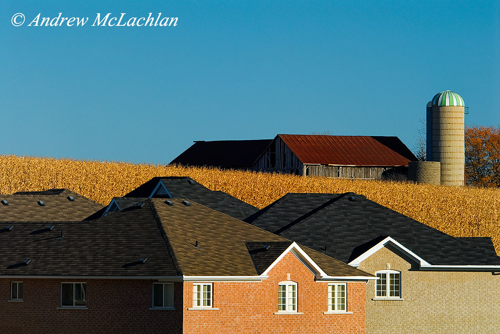 Housing Development Encroaching on Farmland in Newmarket, Ontario, Canada
