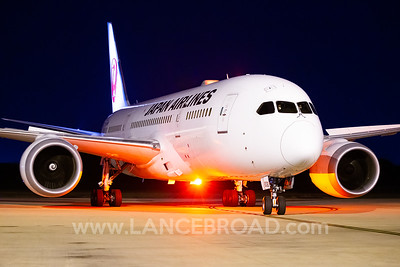 Japan Airlines 787-8 - JA836J - BNE