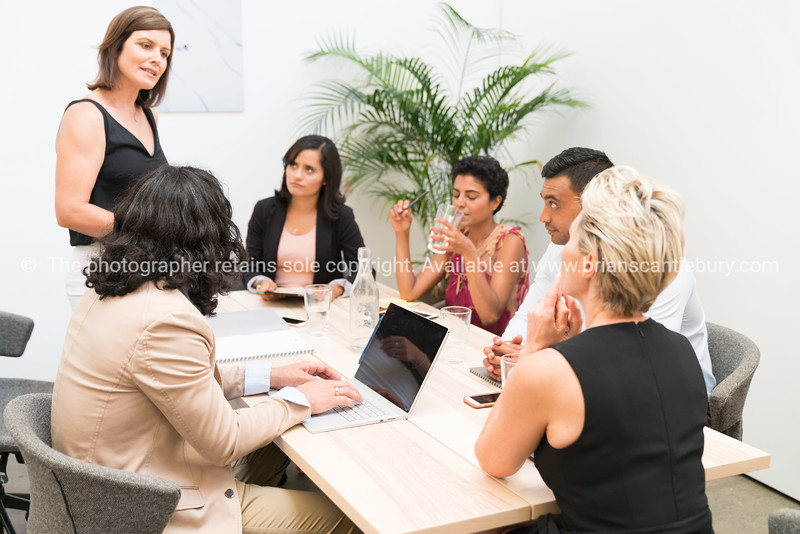 Business meeting with co-workers
