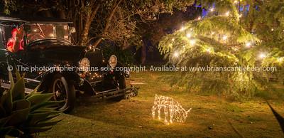 Christmas lights-26