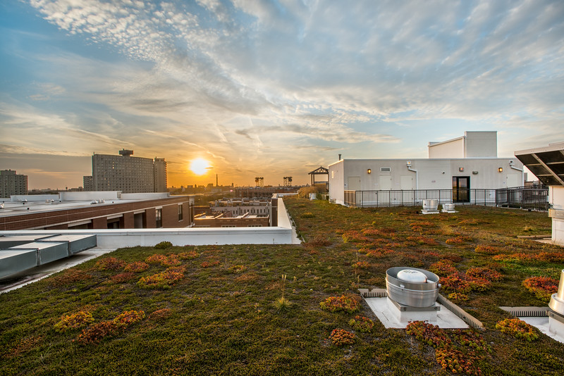 green-roof-terrazio-apartments
