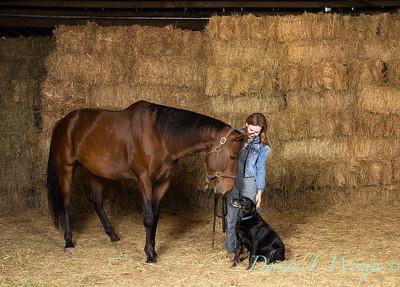 Horse family portrait_104