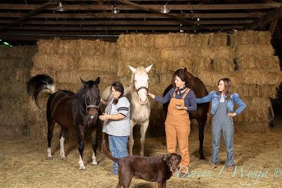 Horse family portrait_106