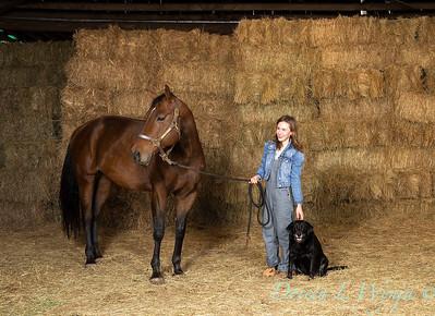 Horse family portrait_105
