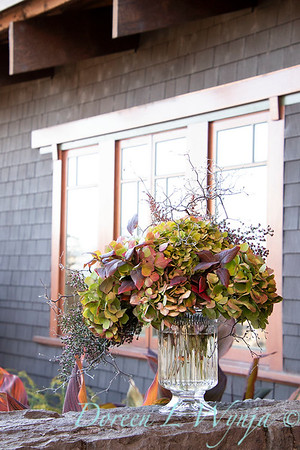 Corokia - Hydrangea fall color vase_7335