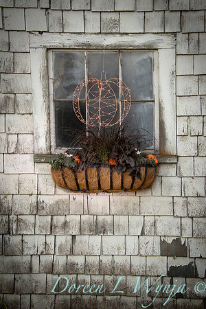 Build a fall window box - How to_7375