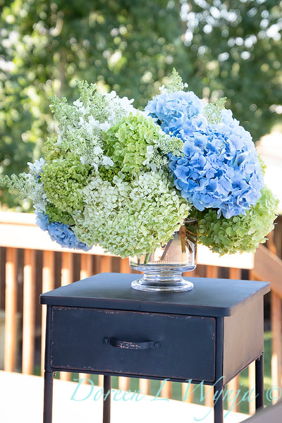 Hydrangeas in a vase_2163