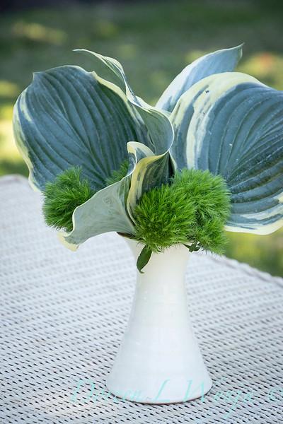 Hosta - Dianthus arrangement_2189